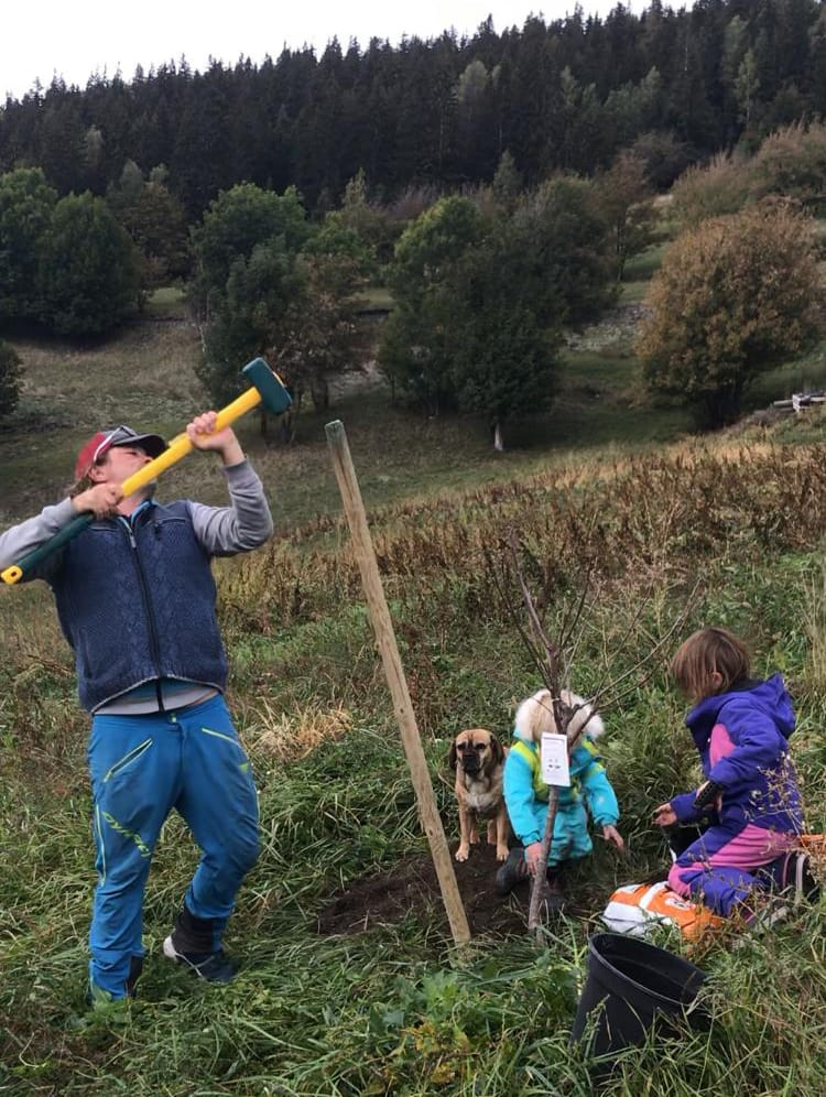 Sustainability Val Heliski Family Planting