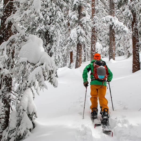 Hire: Splitboard with Skins
