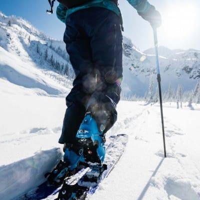 touring skis and skins